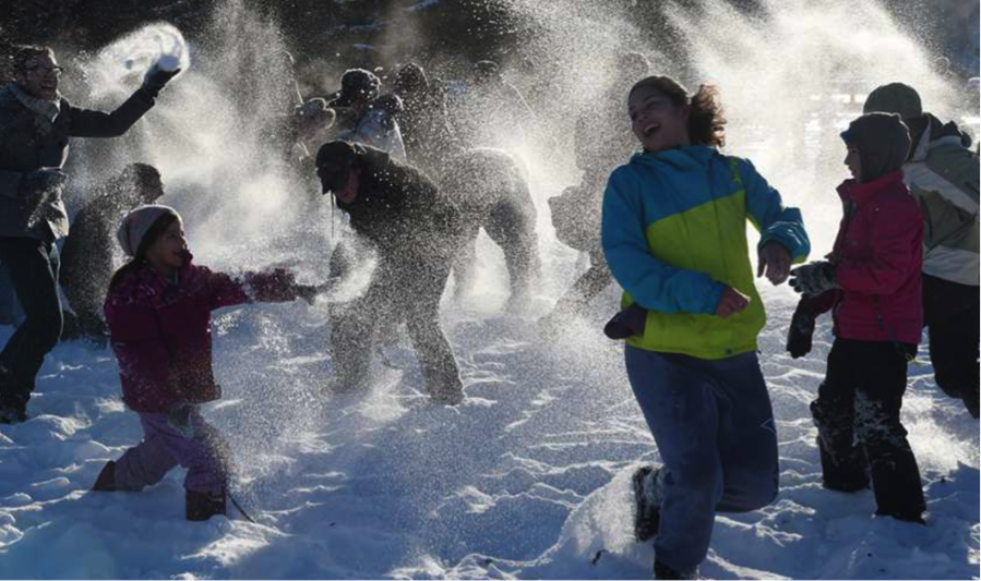 Family Day Weekend and Beyond: A Guide to Ontario Winter Festivals